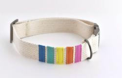 DIY Adjustable Dog Collar