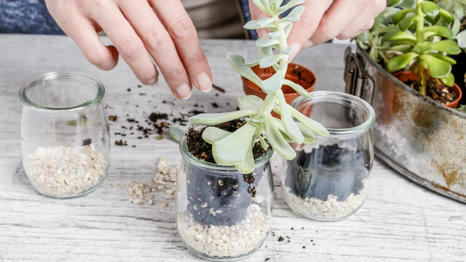 Candle Container Planters
