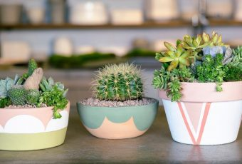 Beautiful DIY Painted Pots